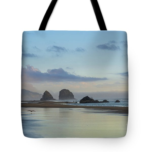 Skimming Along The Beach At Sunset Tote Bag