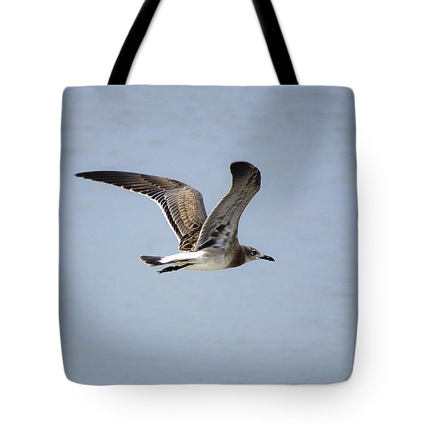 Skimming Seagull Tote Bag