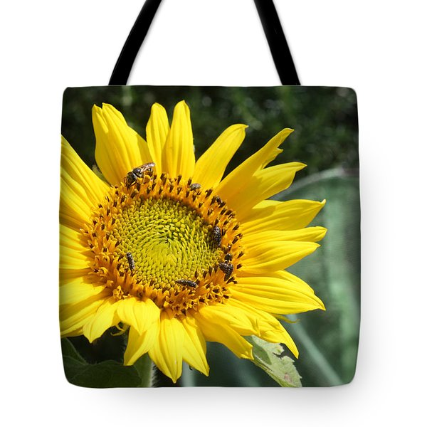 Skipping Spring Tote Bag