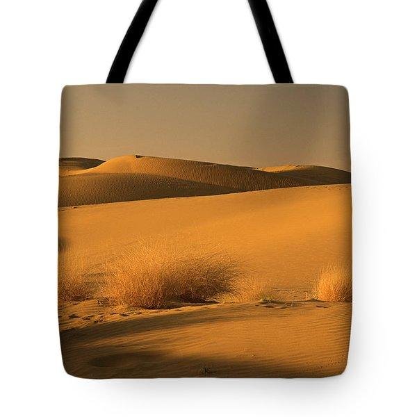 Skn 1124 The Desert Landscape Tote Bag by Sunil Kapadia