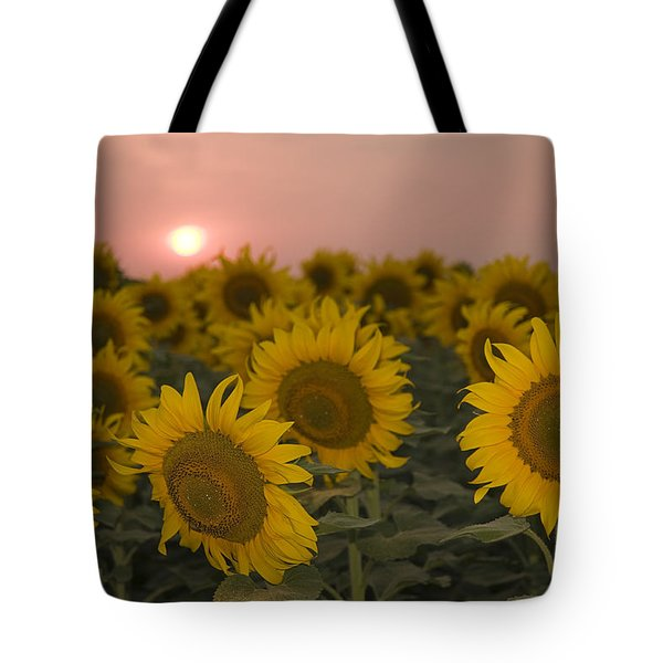 Skn 2178 The Sunflowers At Sunset  Tote Bag by Sunil Kapadia