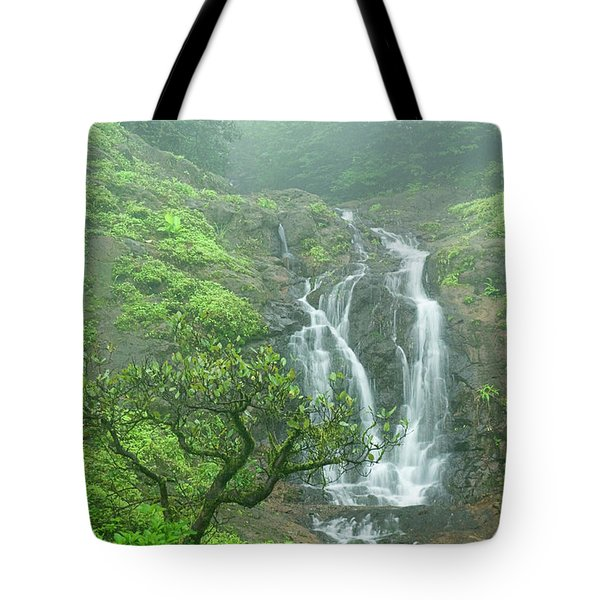 Skn 3758 Admiring Your Beauty Tote Bag