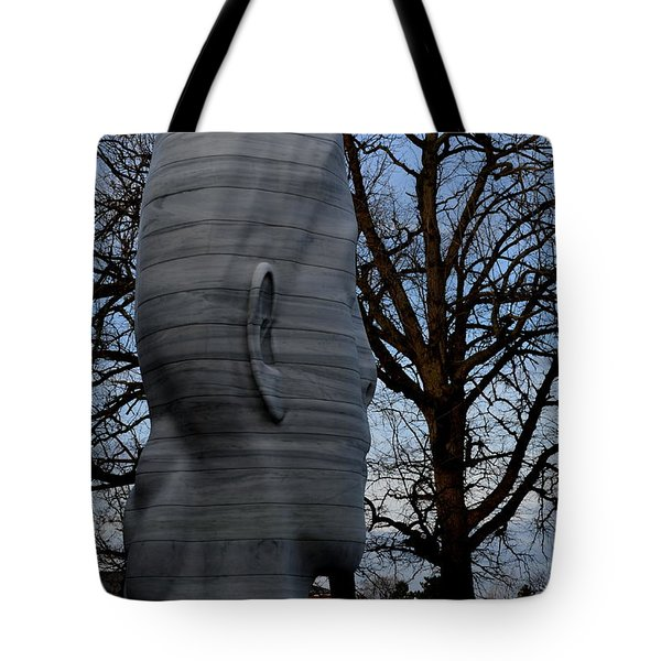 Skulduggery Tote Bag