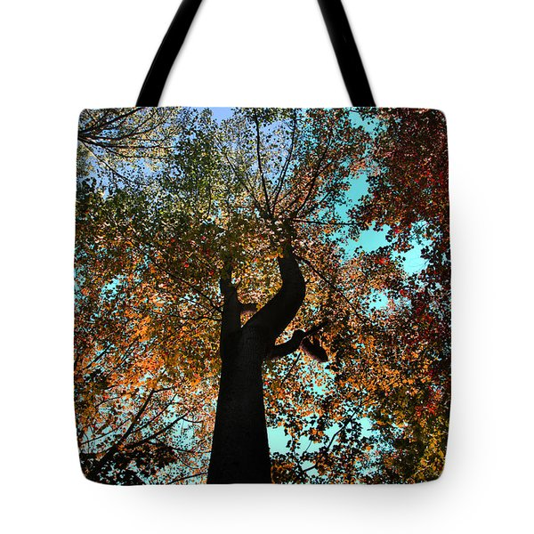Tote Bag featuring the photograph Sky Flower by Joseph G Holland