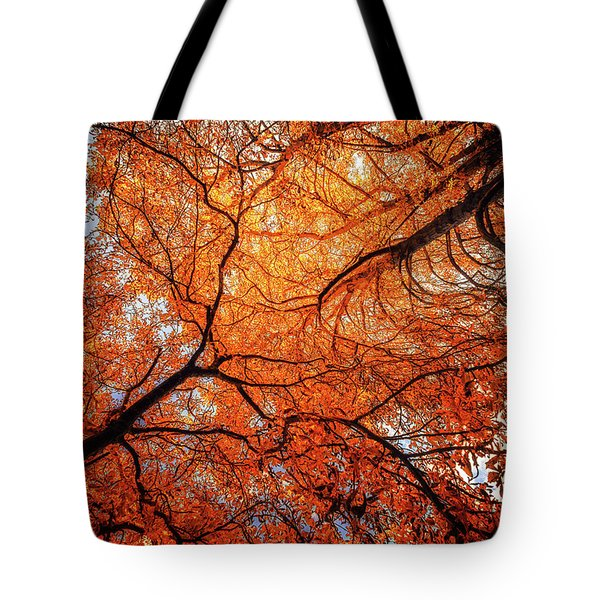 Sky Roots In Forest Red Tote Bag