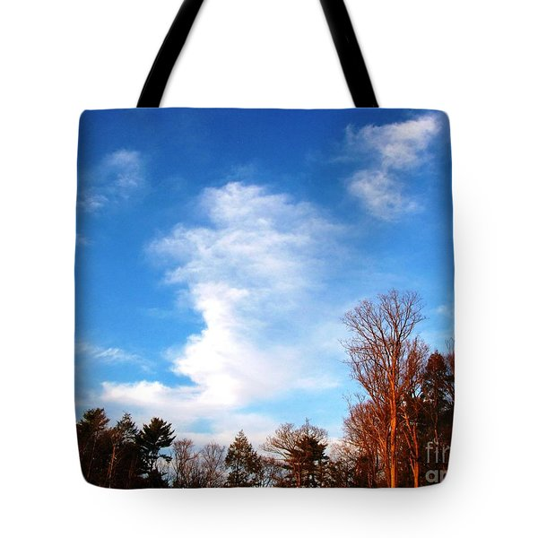 Tote Bag featuring the photograph Sky Study 1 3/11/16 by Melissa Stoudt
