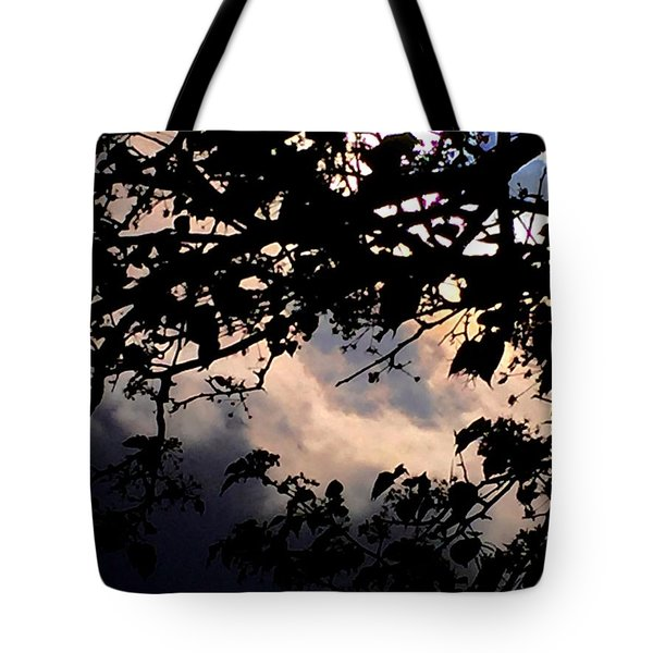 Sky Works Tote Bag