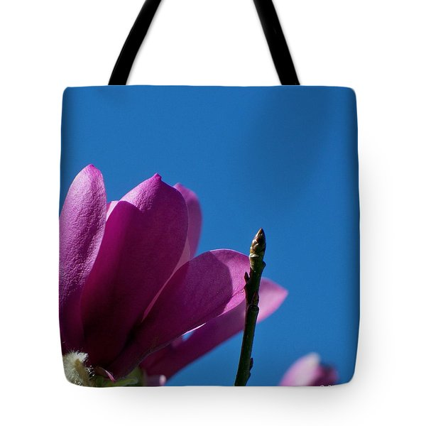 Skyward Tote Bag by Betty Northcutt