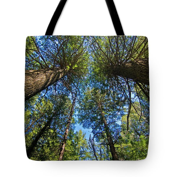 Tote Bag featuring the photograph Skyward by Gary Lengyel