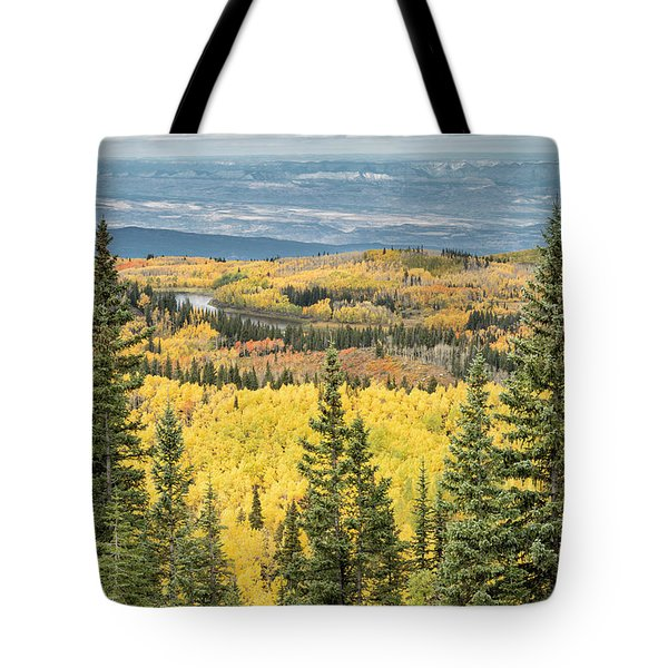 Skyway View Tote Bag