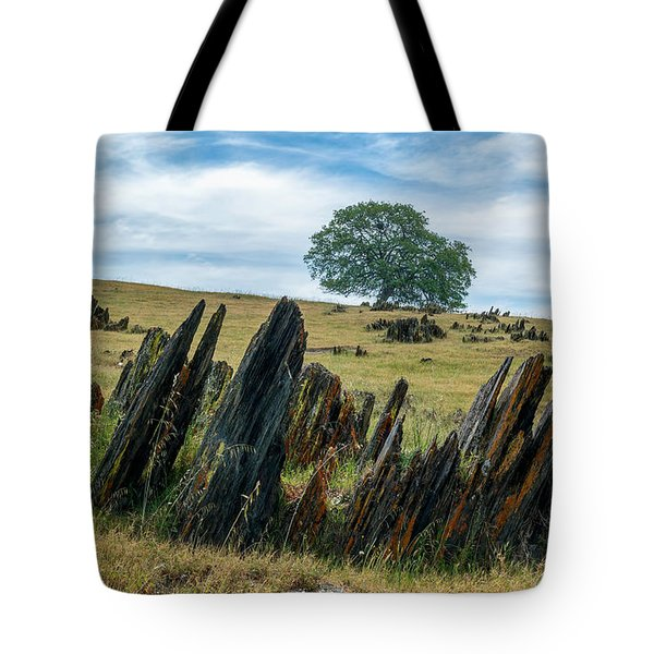 Slate Filled Meadow Tote Bag