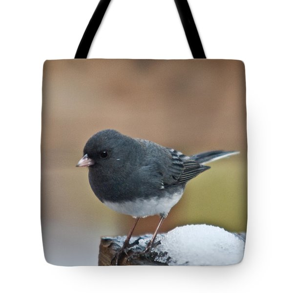 Slate Junco Feeding In Snow Tote Bag