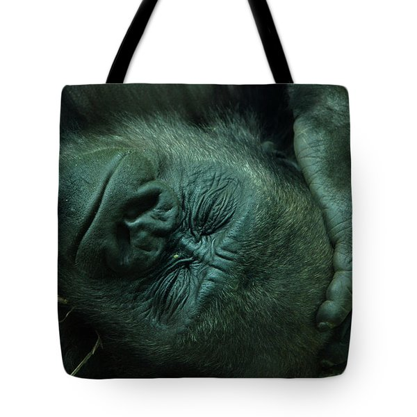 Tote Bag featuring the photograph Sleep Tight by Richard Bryce and Family