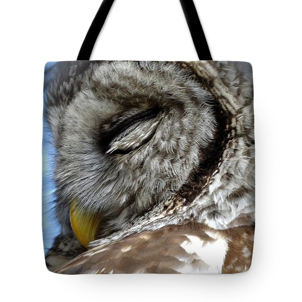 Sleeping Barred Owl Tote Bag by Rebecca Overton