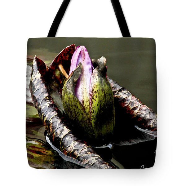 Sleeping Beauty In Water Lily Pond Tote Bag by Carol F Austin