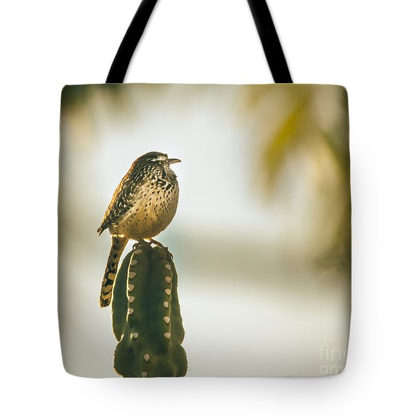 Sleeping Cactus Wren Tote Bag