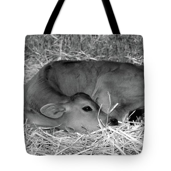 Sleeping Calf Tote Bag