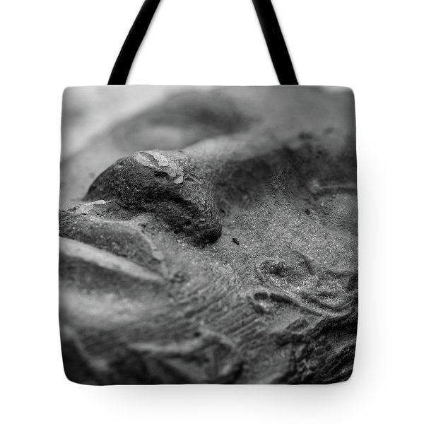 Tote Bag featuring the photograph Sleeping by Clare Bambers