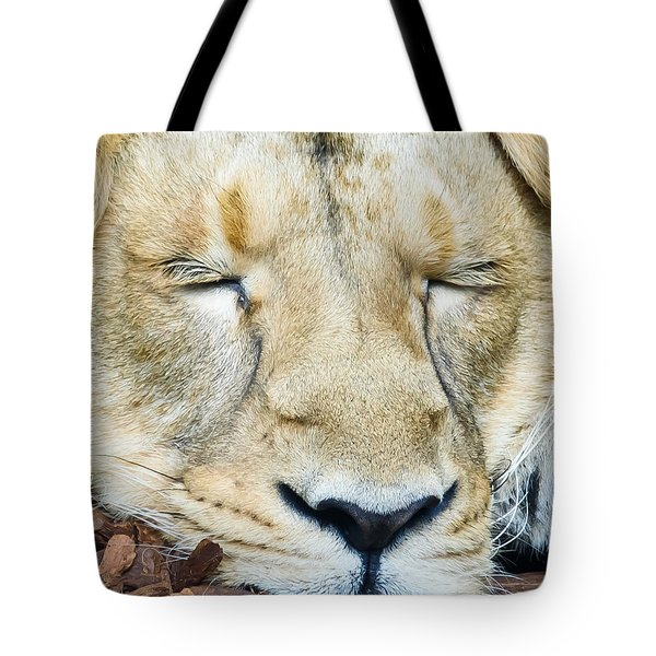 Sleeping Lion Tote Bag by Colin Rayner
