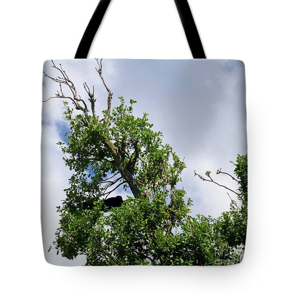 Tote Bag featuring the photograph Sleeping Monkey 2 by Francesca Mackenney