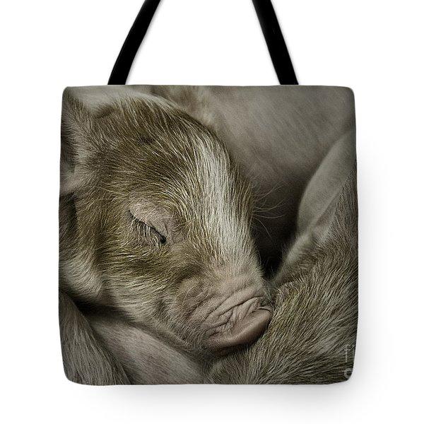 Sleeping Piglet Tote Bag