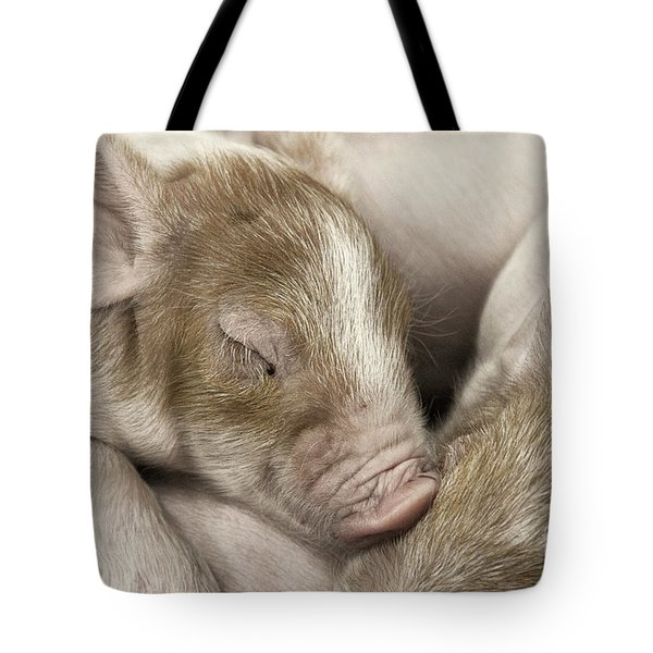 Sleeping Piglet Tote Bag