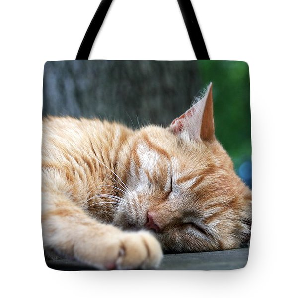 Sleeping Salem Tote Bag