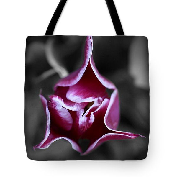 Tote Bag featuring the photograph Sleeping Tulip by E B Schmidt