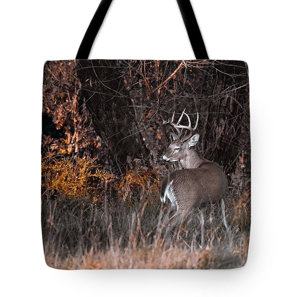 Sleepy Buck Tote Bag