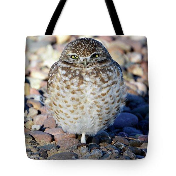 Sleepy Burrowing Owl Tote Bag