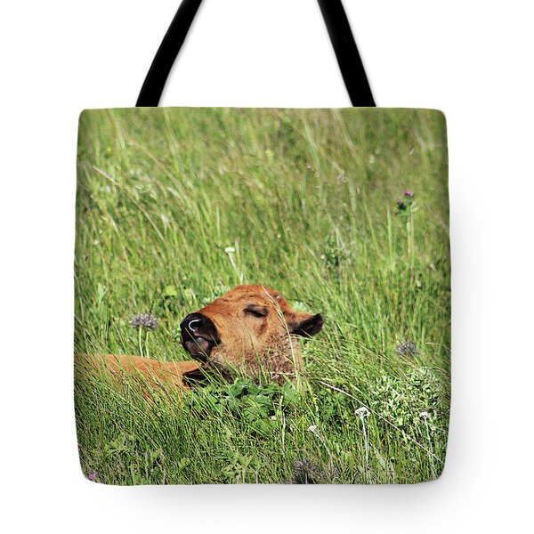 Tote Bag featuring the photograph Sleepy Calf by Alyce Taylor
