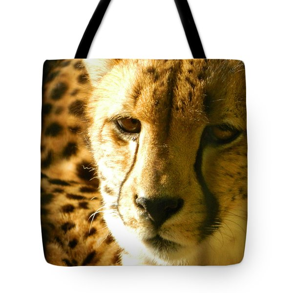 Sleepy Cheetah Cub Tote Bag