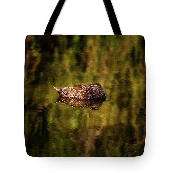 Tote Bag featuring the photograph Sleepy Duck, Yanchep National Park by Dave Catley