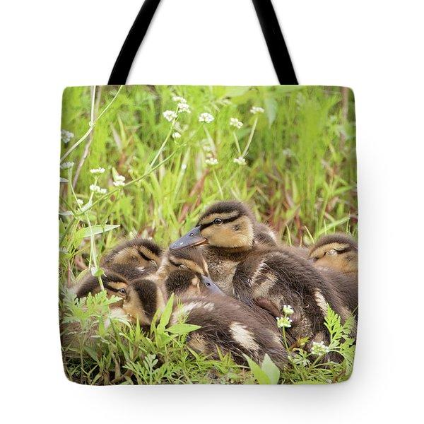Sleepy Ducklings Tote Bag
