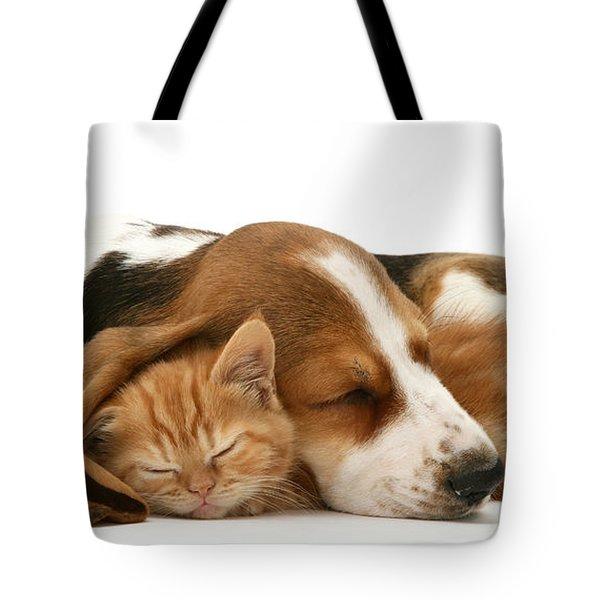 Sleepy Ginger Pals Tote Bag
