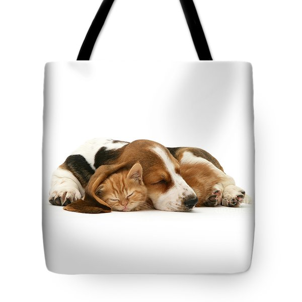 Sleepy Ginger Pals Tote Bag
