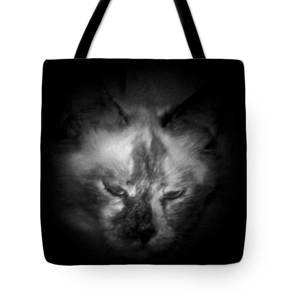 Tote Bag featuring the photograph Sleepy Head by Betty Northcutt