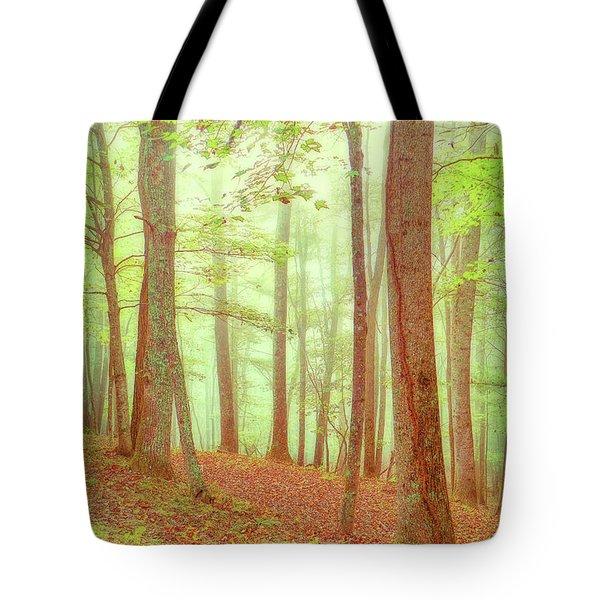 Sleepy Hollow Tote Bag