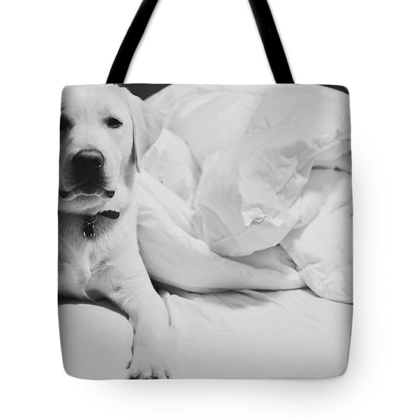 Sleepy Labrador Tote Bag