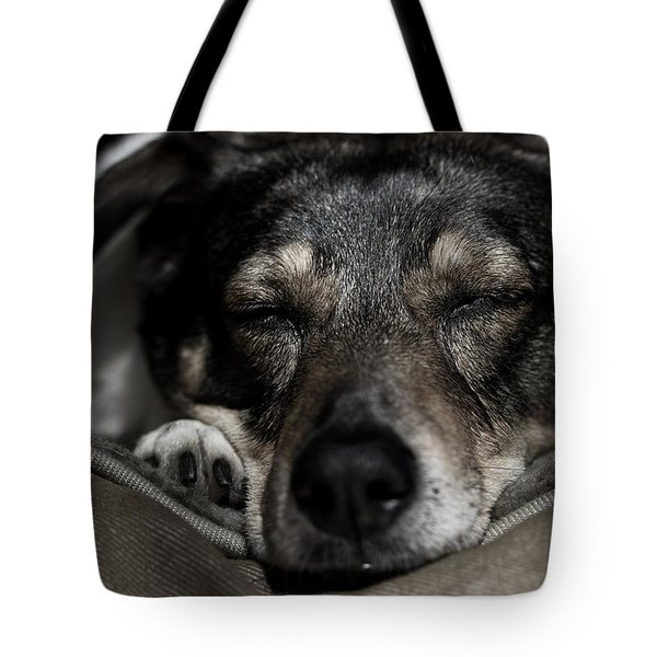 Sleepy Lil Hound Tote Bag