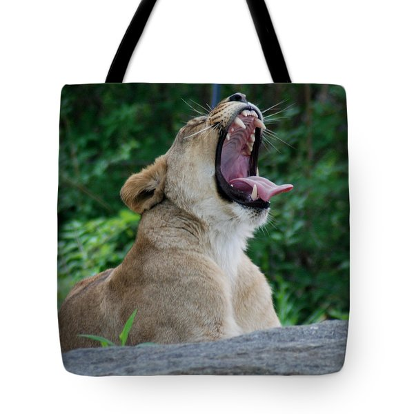 Tote Bag featuring the photograph Sleepy Lion by Richard Bryce and Family