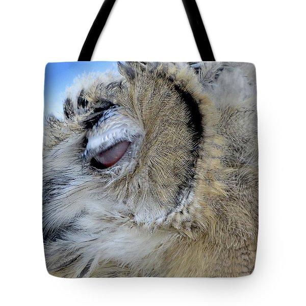 Sleepy Owl Tote Bag