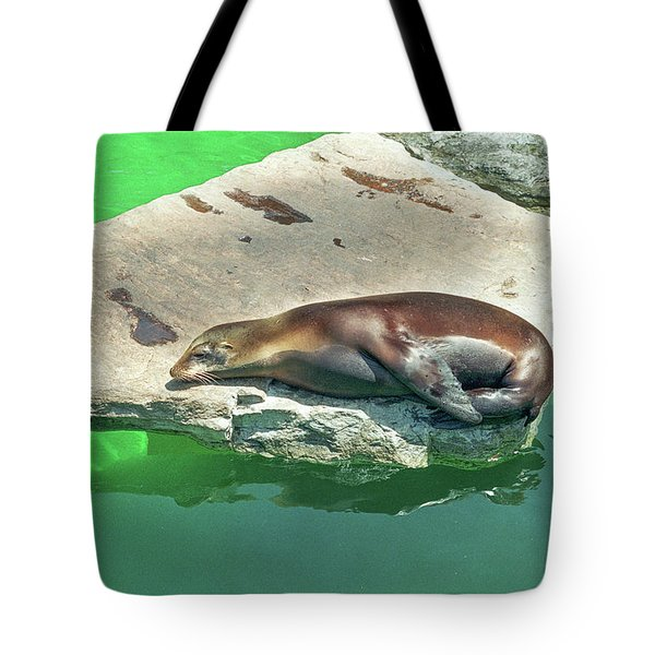 Sleepy Sea Lion Tote Bag