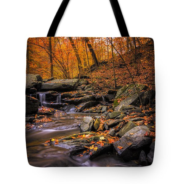 Sliding Autumn Tote Bag