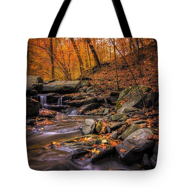 Sliding Autumn Tote Bag