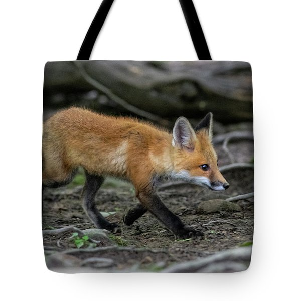 Slinking On The Trail Tote Bag