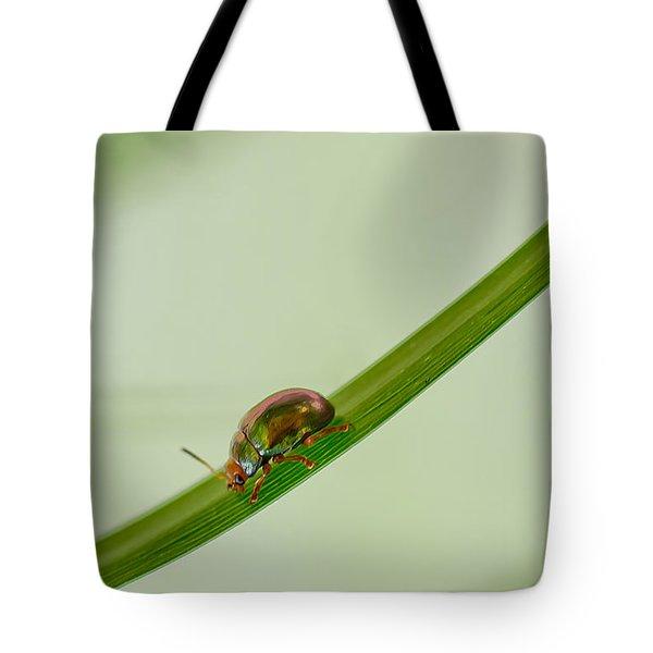 Slippery Dip Tote Bag