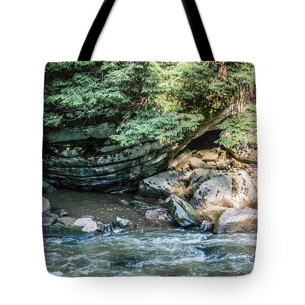 Slippery Rock Gorge - 1895 Tote Bag