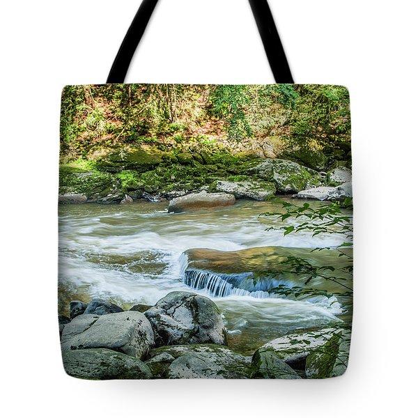 Slippery Rock Gorge - 1914 Tote Bag