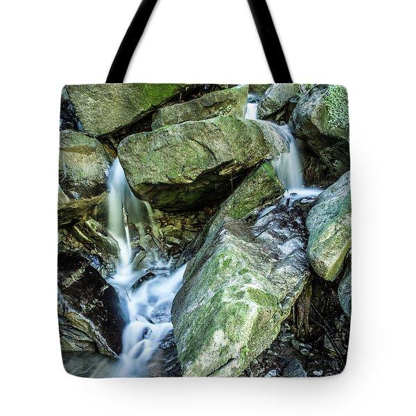 Slippery Rock Gorge - 1929 Tote Bag